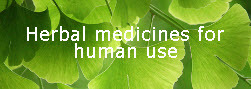 Herbal medicines for human use